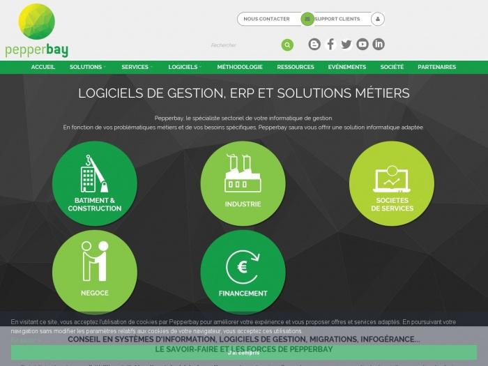 Des logiciels de gestion sur mesure avec pepperbay.fr